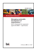 Managing Sustainable Development of Organizations. Framework for Assessment Against BS 8900-1. Specification jacket image