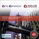 Agile Project and Service Management 2nd Edition