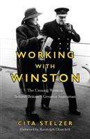 Working with Winston - Front